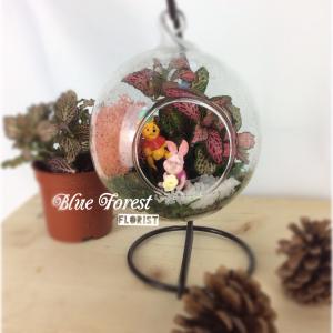 小熊維尼微景觀玻璃瓶植物