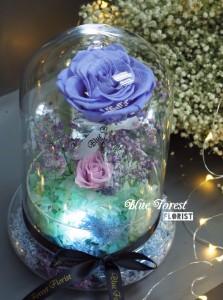 *保鮮•愛系列 *發光玻璃罩玫瑰保鮮花(薰衣草色)*可免費刻上名或祝福字句