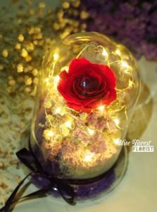 保鮮•愛系列 *LED玻璃罩玫瑰保鮮花(紅色)*可免費刻上名或祝福字句
