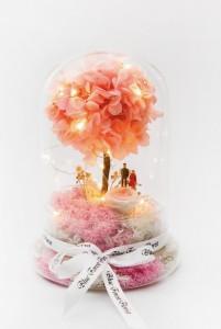 情人節系列 櫻花樹下 *玻璃罩繡球保鮮花(配led星星燈)*可免費刻上名或祝福字句