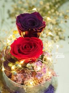 保鮮•愛系列 *LED玻璃罩玫瑰保鮮花(紅/深紫)*可免費刻上名或祝福字句