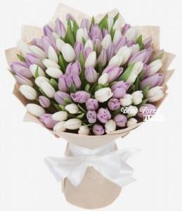 99枝裝紫白色鬱金香花束