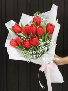 荷蘭紅色鬱金香配滿天星花束