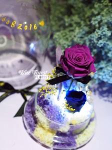 **保鮮•愛系列 *發光玻璃罩玫瑰保鮮花(深紫色)*可免費刻上名或祝福字句