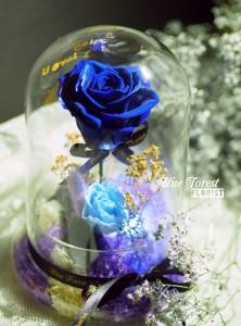情人節系列  保鮮•愛*發光玻璃罩日本玫瑰保鮮花(深藍色)*可免費刻上名或祝福字句