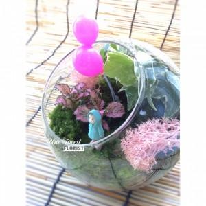 宮崎駿微景觀玻璃瓶植物4