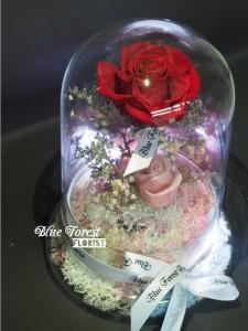 *保鮮•愛系列 *發光玻璃罩玫瑰保鮮花(紅色)*可免費刻上名或祝福字句