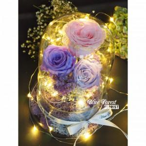 保鮮•愛系列 *發光玻璃罩玫瑰保鮮花(3拼色)*可免費刻上名或祝福字句*