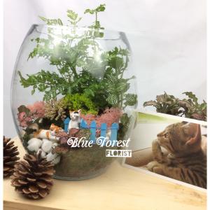 玻璃樽微觀植物