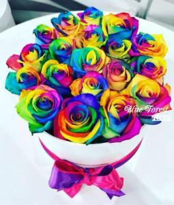 18枝彩虹玫瑰花盒