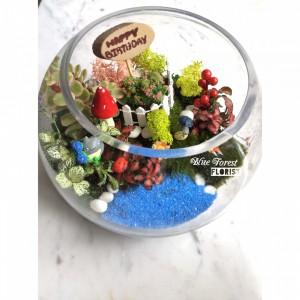 91龍貓微景觀玻璃瓶植物