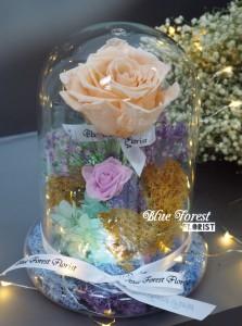 *保鮮•愛系列 *發光玻璃罩玫瑰保鮮花(香檳色)*可免費刻上名或祝福字句