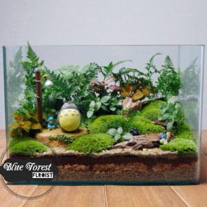 P2817龍貓微景觀玻璃瓶植物
