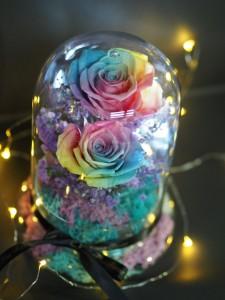 *  保鮮•愛 *發光玻璃罩玫瑰保鮮花(彩虹玫瑰)*可免費刻上名或祝福字句